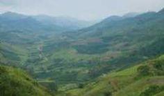 Piaçu - vale guarani, Por lourival f da silva