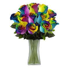 Ultimate Rose One Dozen Rainbow Roses with Vase   HSN.COM