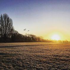 Wowzers! What a gorgeous sunrise! #winter #sunrise #landscape #miltonkeynes #stonystratford #wonderfullwalks