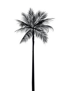 palm-tree-print-palm-leaves-print-palm-tree-art-palm-tree-wall-art-printable-home-decor-summer-art-summer-print-black-and-white-palm-art-bl/ SULTANGAZI SEARCH Palm Tattoos, Black Ink Tattoos, Body Art Tattoos, Print Tattoos, Tattoo Black, Tatoos, Palm Tree Drawing, Palm Tree Art, Tree Wall Art