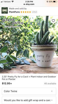 Essential Things For Herb Garden Indoor Diy Kitchens Pots 35 Succulents Garden, Garden Plants, Indoor Plants, Planting Flowers, Cactus Pun, Cactus Plants, Cacti, Outdoor Pots, Outdoor Gardens
