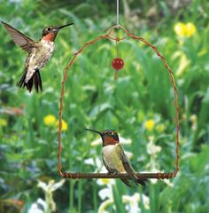 A swing for hummingbirds!  Hummingbirds are territorial and will use this swing as a perch to watch over their food source. Simply place this swing near hummer feeders and enjoy watching them sit and swing. Red glass bead dangler attracts birds.