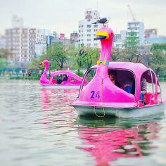 Pass Tokyo Tourism, Destinations, Park, Outdoor Decor, Fun, Travel, Tips And Tricks, Viajes, Parks