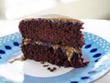 Trisha Yearwood's Cocoa Cake w/Caramel Icing   (NOTE: When making the icing - due to the heat of the caramel, when pouring the mixture into the mixing bowl - DO NOT USE THE GLASS MIXING BOWL - use a metal one & spread quickly- add a little water & mix if it gets too thick)