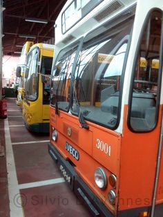 Iveco, Buses, Salvador, 30, Portugal, Vehicles, Transportation, Savior, Busses