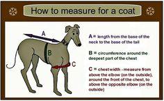 greyhound coat pattern - Google Search