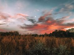 Take me into October and I will show you light for your soul to dance with under an amazing sky. Dusk at Yeck Park, Centerville Ohio. October 1, 2017