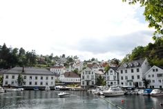 Tvedestrand - book town Golf Courses, Places To Go, Traveling, Around The Worlds, Island, Book, Beautiful, Block Island, Travel