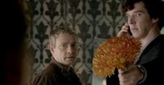 for all the pain you caused us sherlock...these flowers wont help...but i'll take them anyway