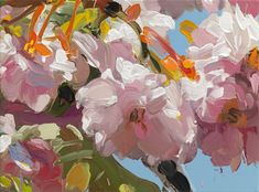 Jan De Vliegher's Blossoms - Shelley Davies
