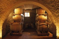 The barriques in a wine cellar of Cinigiano. #maremma #tuscany #wine #prodottitipici #localproducts