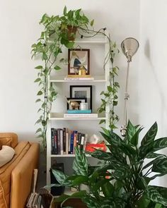 Bedroom Plants Decor, House Plants Decor, Room Ideas Bedroom, Diy Bedroom Decor, Living Room Decor, Living Room With Plants, Plant Wall Decor, Decor Room, Easy Wall Decor