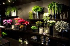 flower shop... one day! Ovando, New York
