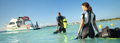 when we go back. i WILL pass the scuba class so that hubby doesnt have to go alone again