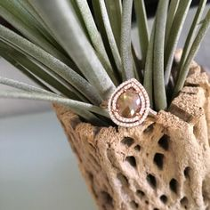 Learn About - Liven Co. Magic Fine Jewelry - rose gold, diamond, and sapphire ring