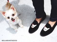 M'O Exclusive: Custom Dogs by Del Toro loafers