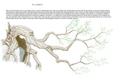 tree tutorial 11/11 by VinceAndrews Drawing Reference, Design Reference, Tree Forest, Realistic Drawings, Detailed Image, Art Tutorials, Trees To Plant, Watercolor Art, Concept Art