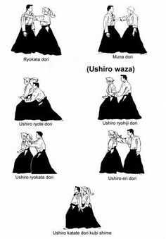 Aikido grabs