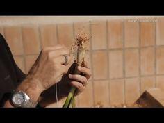 Vídeo que explica cómo se hace una calçotada con la técnica del alambre. Siempre con Calços de Valls, salsa de calçots, baberos para calçotada y sarmientos.