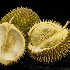 Durian, if you can get past the smell.