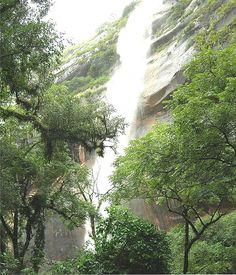 Parque Nacional de Calilegua Jujuy +