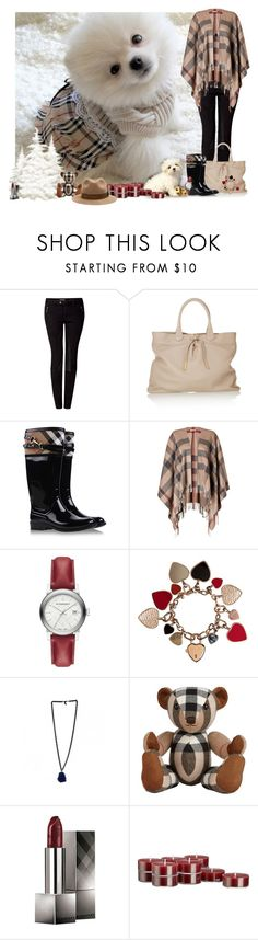 """""""Burberry Pup - IJ"""" by angiejane ❤ liked on Polyvore featuring Burberry and Crate and Barrel"""