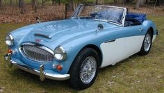 Austin-Healey ... love this car, color to
