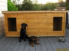 Sadi and Rolu - California:  several years of being tried and tested, this dog house has been proven to be the most comfortable and the safest home you can build for your beloved dogs.