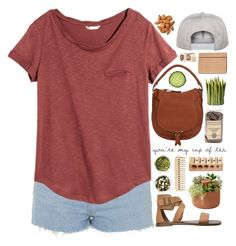 f11f19b6b41f by banayana ❤ liked on Polyvore featuring Chloé