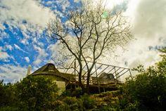 Kogman & Keisie Guest Farm Eco Friendly, Restaurants, Green, Restaurant, Diners