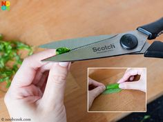 How to finely snip basil