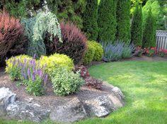 Backyard Perimeter Garden Design traditional landscape