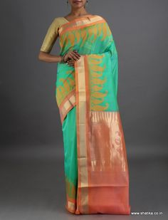 Satvika Paisleys on the Border #CoimbatoreSilkCottonSaree