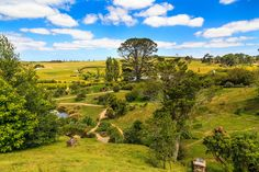 ニュージーランドのオークランドから車で約2時間。マタマタ郊外にあるホビット村。映画「ロード・オブ・ザ・リング」のロケ地がそのまま残っていて、実際に訪れることができるのです。