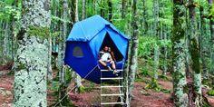 Offerta vacanze in tenda sospesa tra gli alberi in Toscana in campeggio vicino Marina di Castagneto