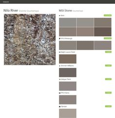 Nilo River. Granite Countertops. Countertops. MSI Stone. Behr. PPG  Pittsburgh.