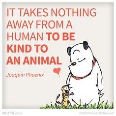 Truth! #petsitter #kalispell #montana