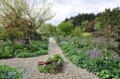Picasa Web Albums Flip Garten Imig G Tuin Duitsland