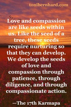 Patience, diligence, and compassionate action develop the seeds of love and compassion within us.