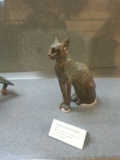 Antico Egitto - mummia di gatto