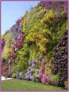 Blühende Mauer: Vertikaler Garten à Rossano // Bl - Terrasse Jardin Idees Jardin Vertical Artificial, Vertical Garden Design, Vertical Gardens, Green Architecture, Rooftop Garden, Garden Inspiration, Backyard Landscaping, Beautiful Gardens, Outdoor Gardens