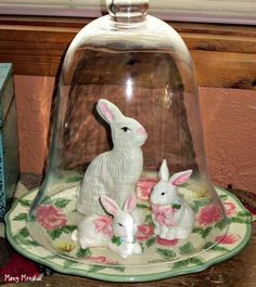for Easter - put cloche on Desert Rose plate White Bunnies, Bunny, Terrarium Jar, Country Farmhouse Decor, Desert Rose, Easter Crafts, Decorative Bells, Holiday Ideas, Jars