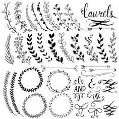 Chalkboard Laurels & Wreaths Clip Art // Plus Photoshop Brushes // Hand Drawn…