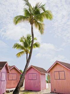 little pink beach shacks