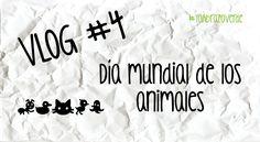 En esta ocasión compartimos la Bendición tradicional de los animales, en el marco de la celebración del Día Mundial de los Animales. el 4 de octubre, en la ciudad de Xalapa, Veracruz, MX.