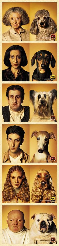 Owner & Dog Lookalike Contest (Ad). Original source unknown. Via: http://www.mediaartsliterary.com/WorldofDogs/lookalikecontest.htm