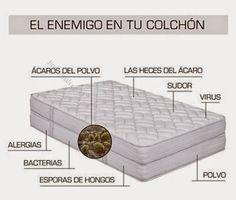 Descubre cómo limpiar y desinfectar tu colchón: ¡Cuida de tu salud! - TuSalud.Info
