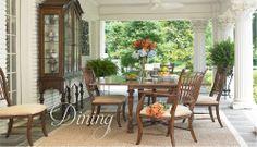 Dining.  Fine furnishing