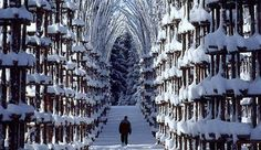 Snow Cathedral in Tromsø, Norway Places Around The World, Oh The Places You'll Go, Places To Travel, Places To Visit, Around The Worlds, Lofoten, Beautiful World, Beautiful Places, Beautiful Norway