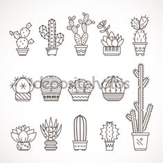 Set of geometric cacti, cactus plants — Stock Illustration #81638054